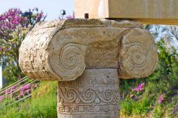 Parco-Archeologico-Metaponto